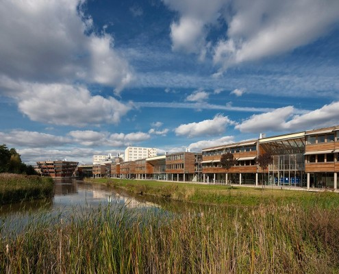 Lake at Jubilee Campus, University of Nottingham - Hopkins & Partners